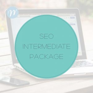 SEO Intermediate Package