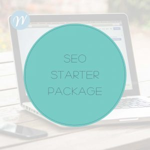 SEO Starter Package
